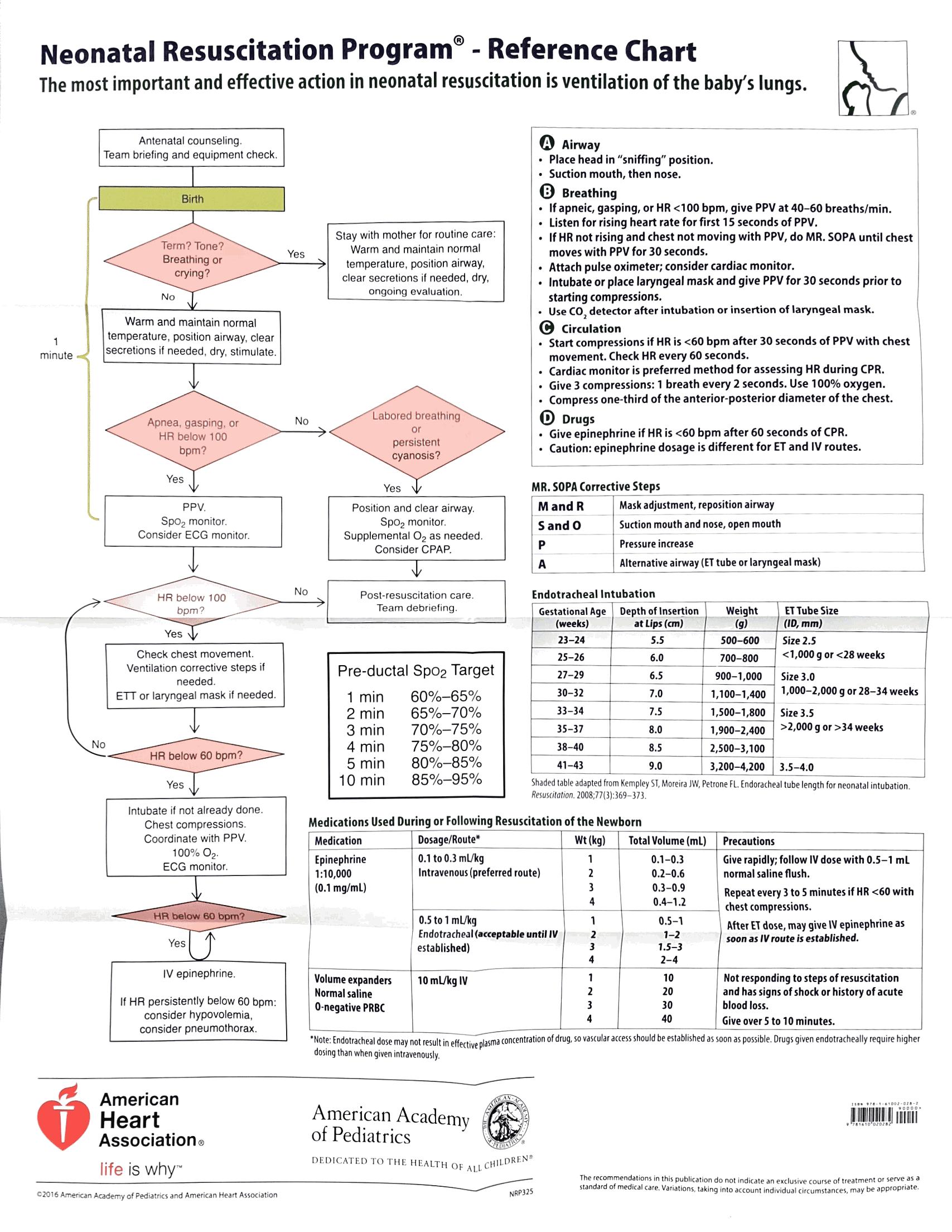 NALS - Neonatal Resuscitation Algorithm (NALS) | MedTx